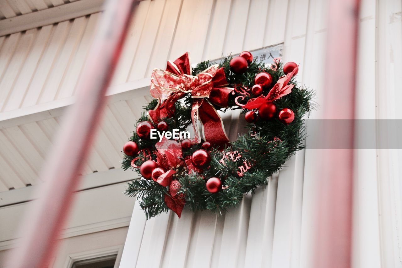flower, red, building exterior, window, no people, growth, architecture, plant, window box, day, outdoors, close-up, built structure, nature, fragility, christmas decoration, freshness, flower head