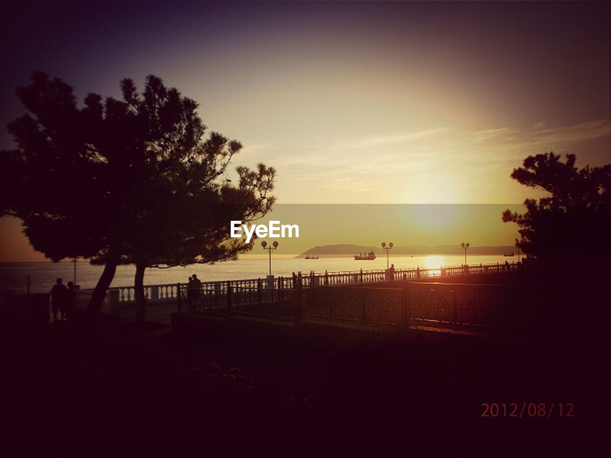 sunset, silhouette, tree, sea, beach, sky, scenics, water, tranquil scene, tranquility, beauty in nature, horizon over water, orange color, nature, shore, sun, idyllic, incidental people, sunlight, cloud - sky