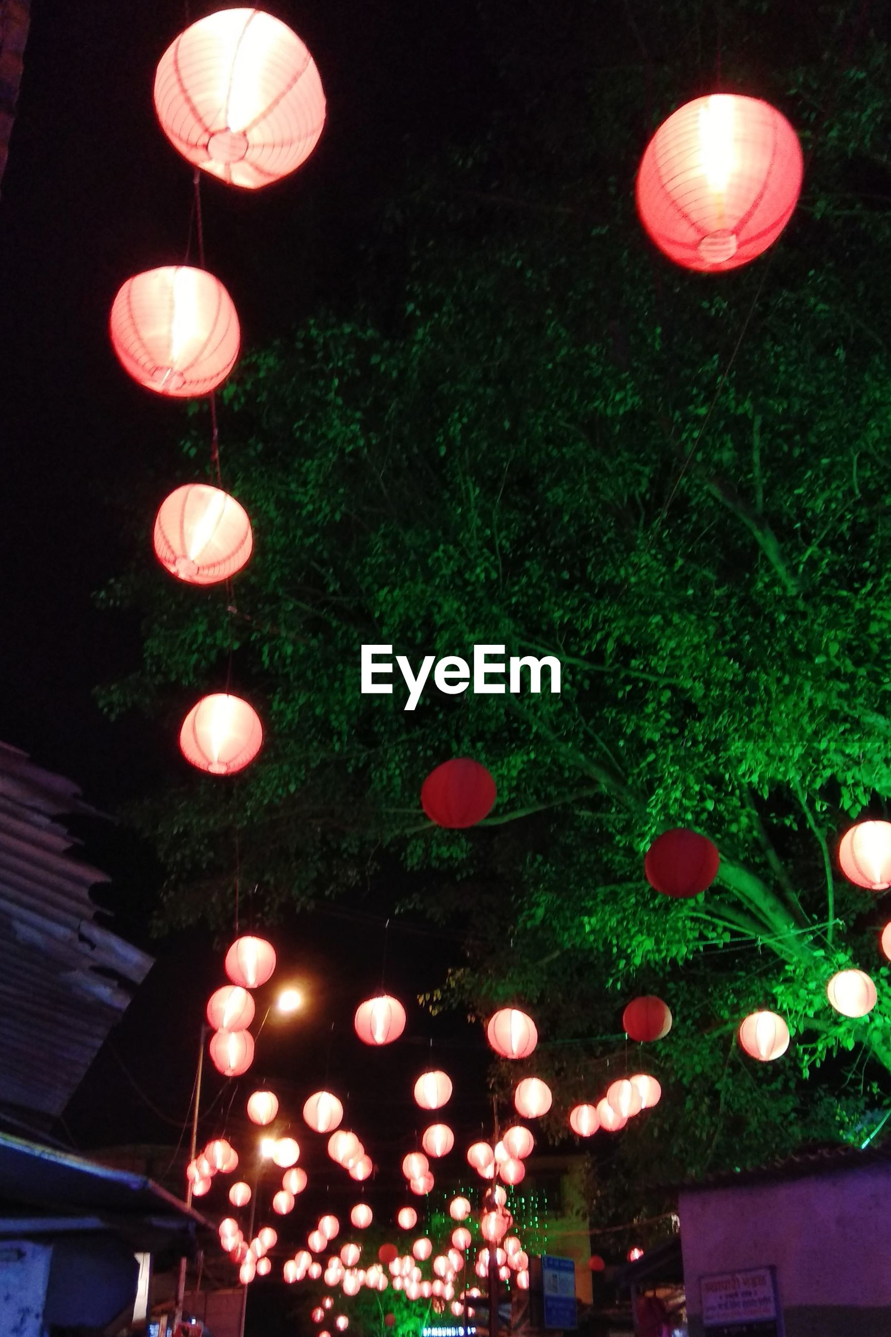 LOW ANGLE VIEW OF ILLUMINATED LANTERNS HANGING BY TREES