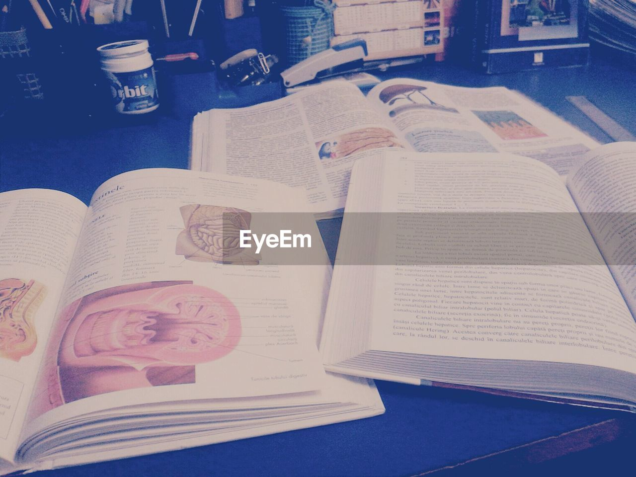 book, indoors, table, paper, text, education, no people, close-up, literature, wisdom, day