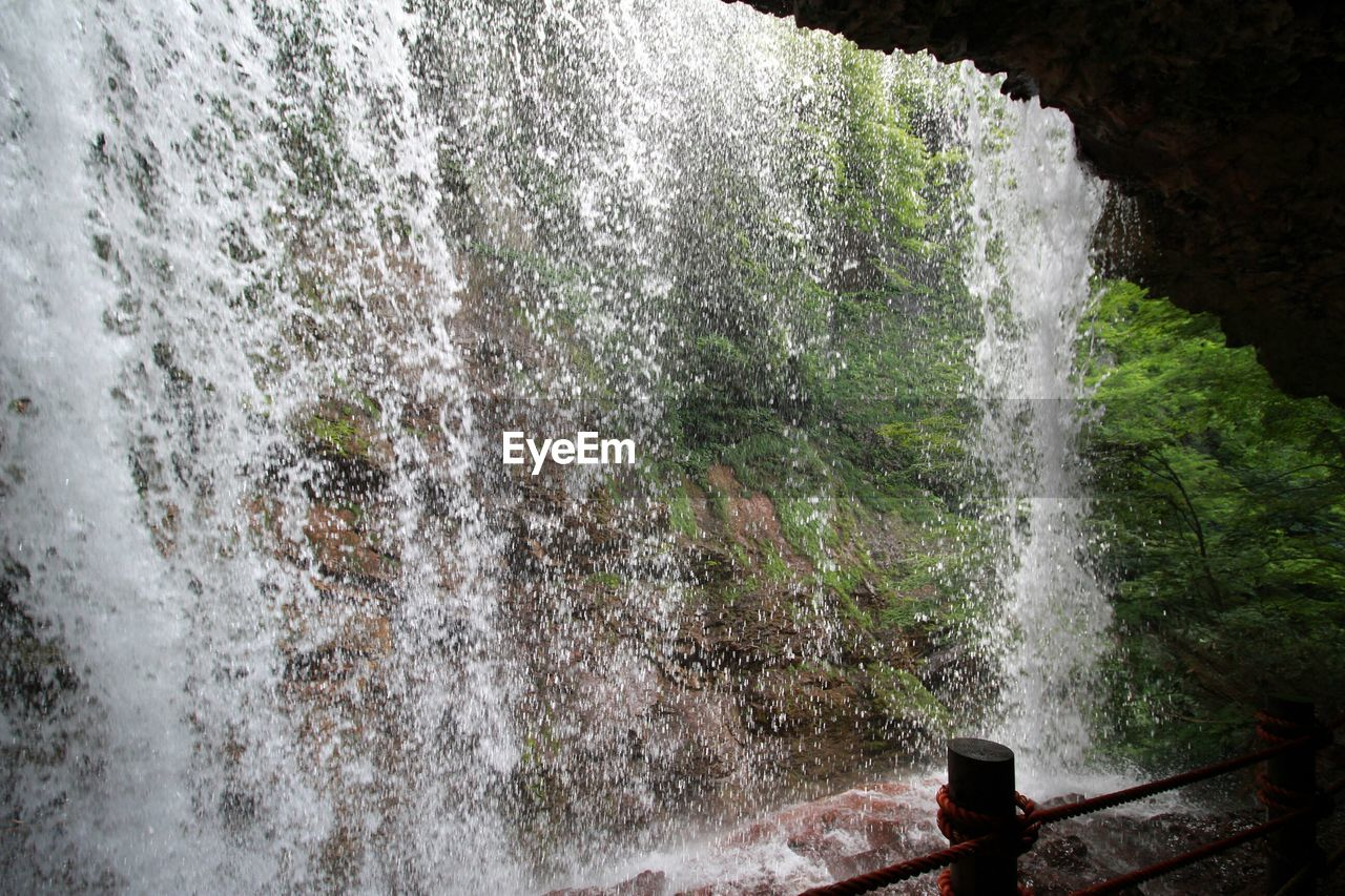 water, waterfall, motion, flowing water, long exposure, splashing, day, nature, no people, river, outdoors, beauty in nature, blurred motion, spraying, power in nature, running water, scenics, rapid, forest, tree, force