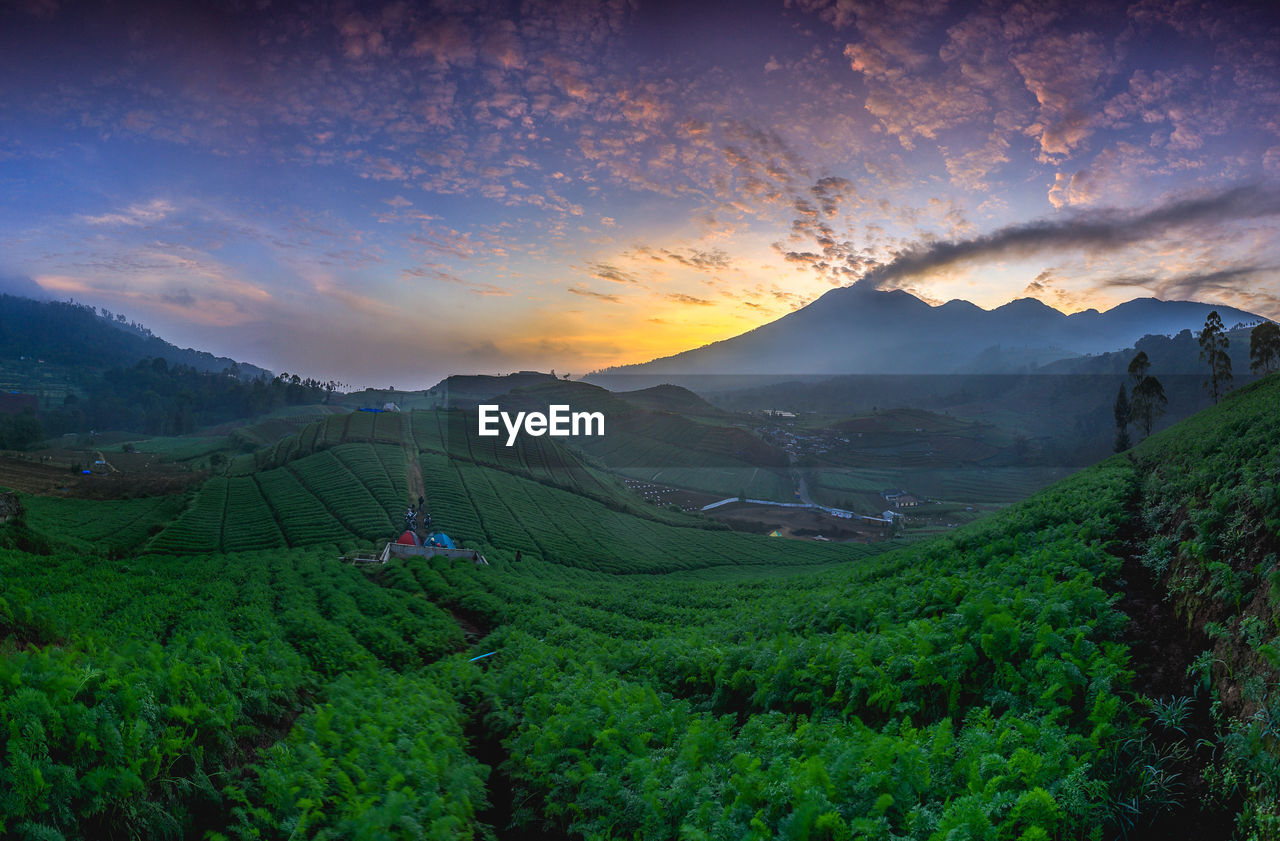 SCENIC VIEW OF FARMS AGAINST SKY DURING SUNSET