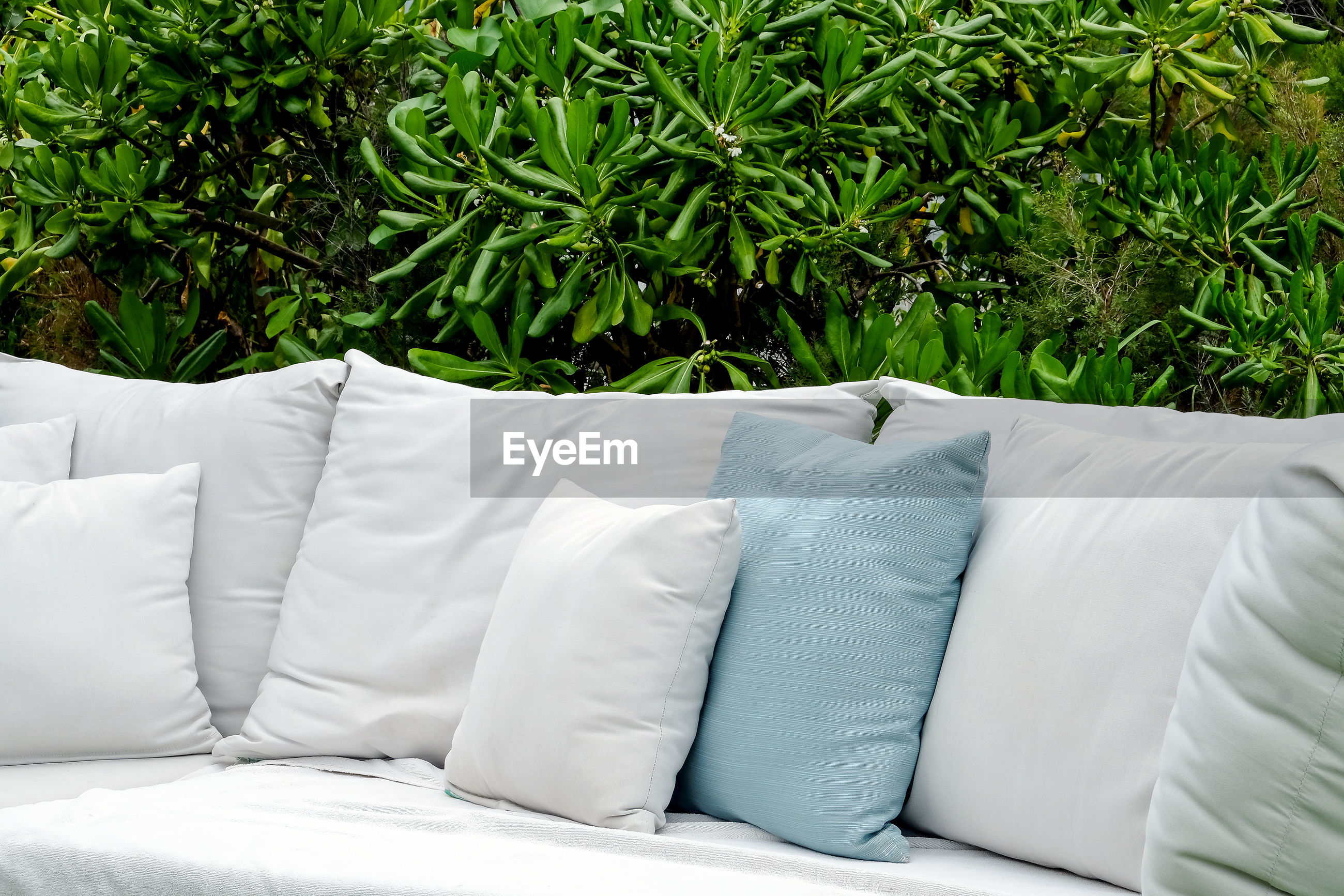 WHITE SOFA ON BED BY PLANTS