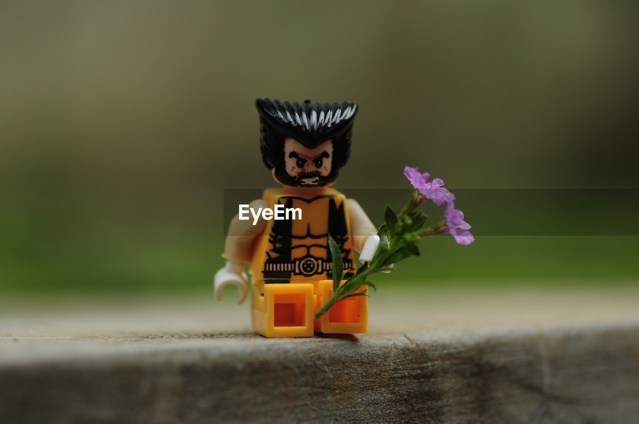 toy, human representation, childhood, halloween, no people, day, outdoors, flower, nature, close-up