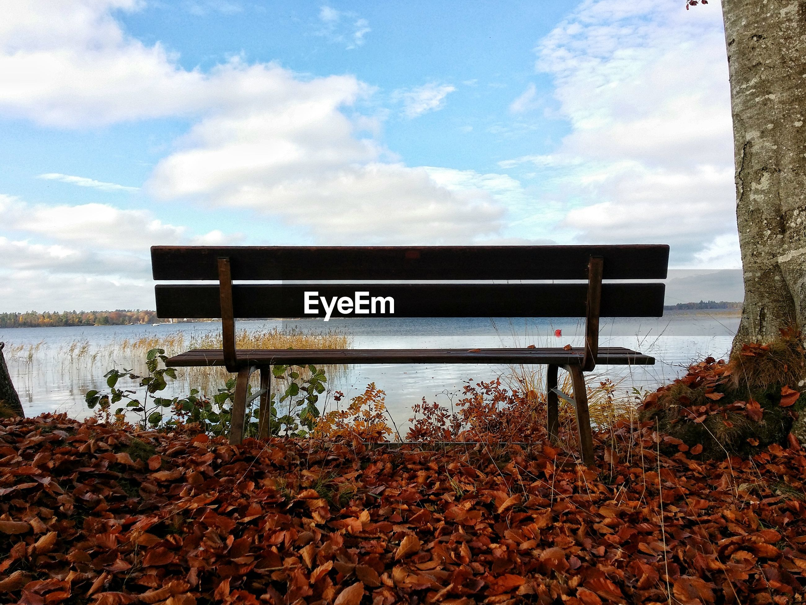 Empty wooden bench by river against cloudy sky during autumn