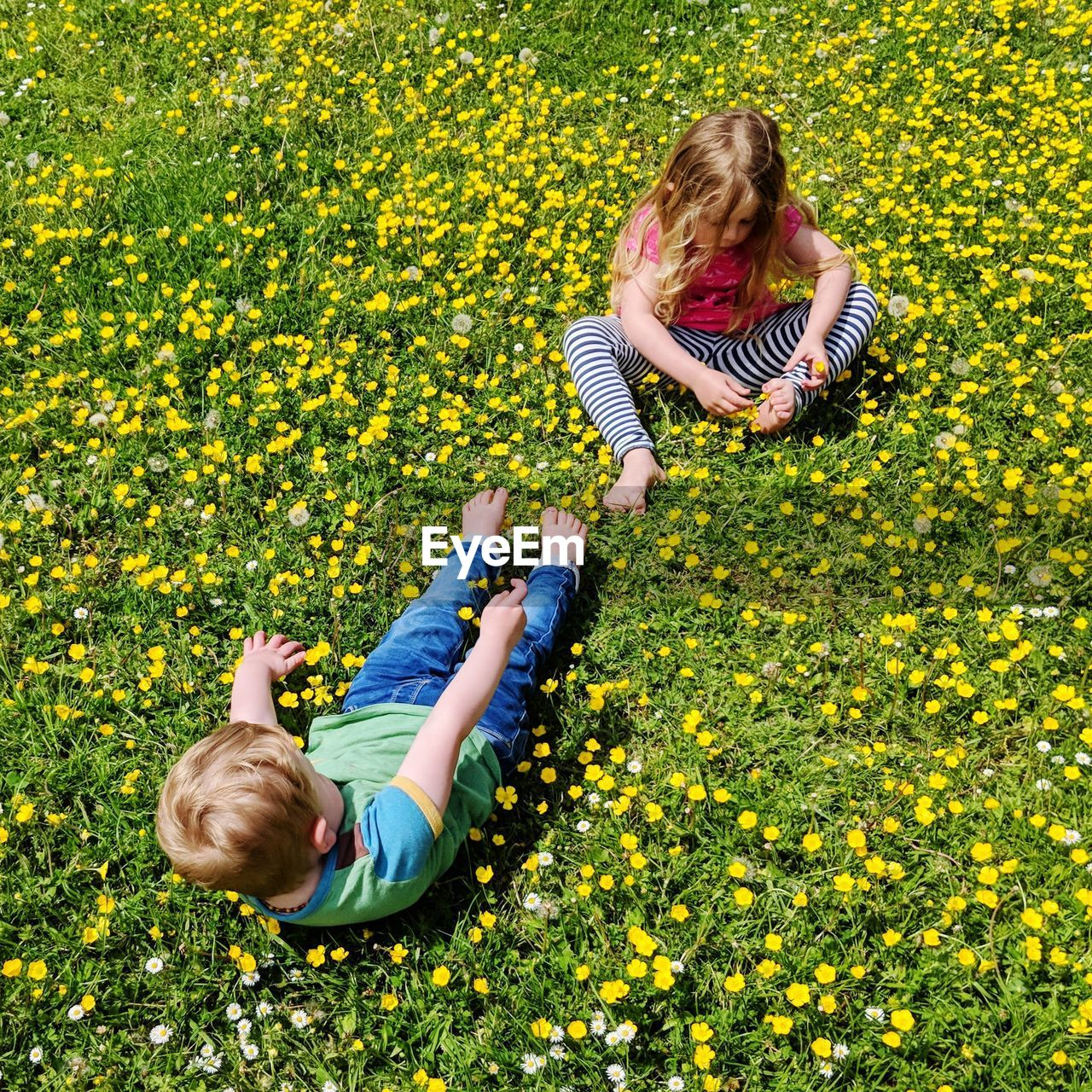Girl with brother on flowering field during sunny day