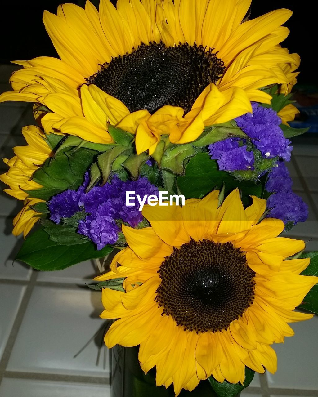 High angle view of sunflowers at home
