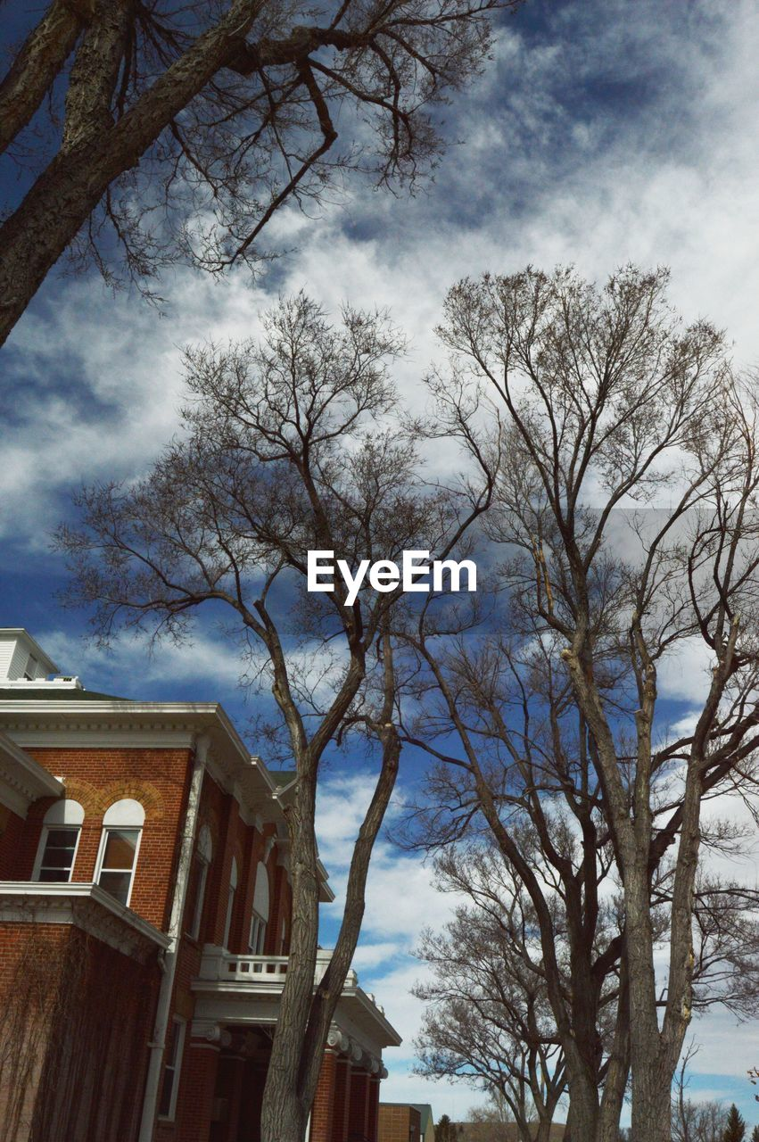 tree, sky, building exterior, architecture, house, built structure, bare tree, low angle view, branch, no people, outdoors, cloud - sky, day, nature