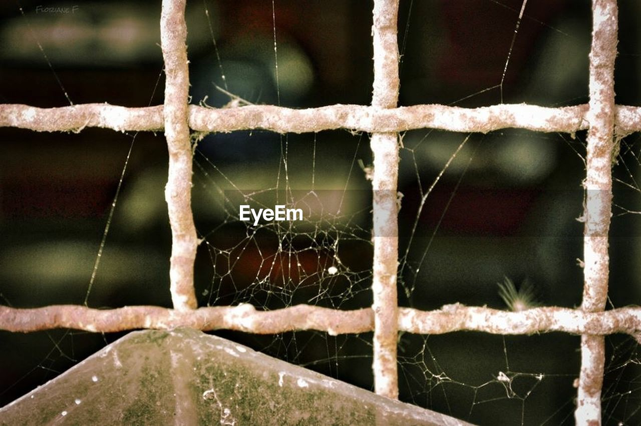 focus on foreground, close-up, rusty, spider web, no people, outdoors, day, nature