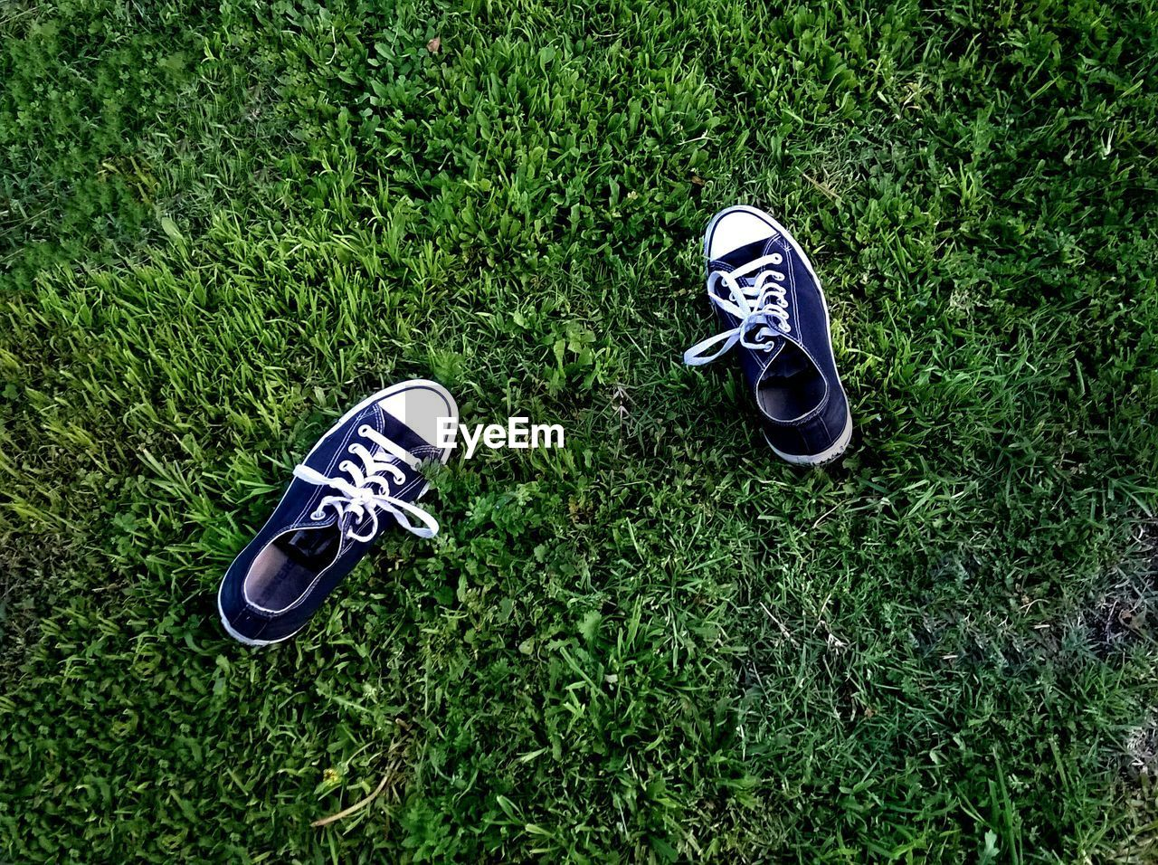 High angle view of canvas shoes on grass