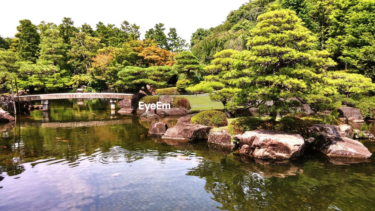water, tree, plant, reflection, lake, waterfront, beauty in nature, tranquility, nature, tranquil scene, growth, no people, day, green color, scenics - nature, rock, rock - object, solid, outdoors, bridge - man made structure, flowing water
