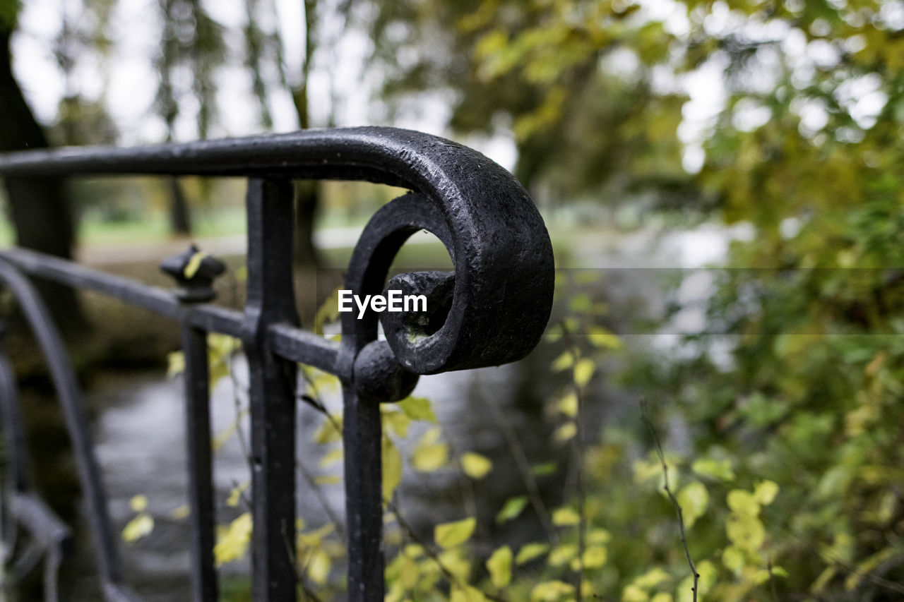 focus on foreground, metal, no people, day, close-up, nature, tree, plant, outdoors, security, selective focus, safety, protection, chain, iron - metal, black color, growth, rusty, green color, strength, iron