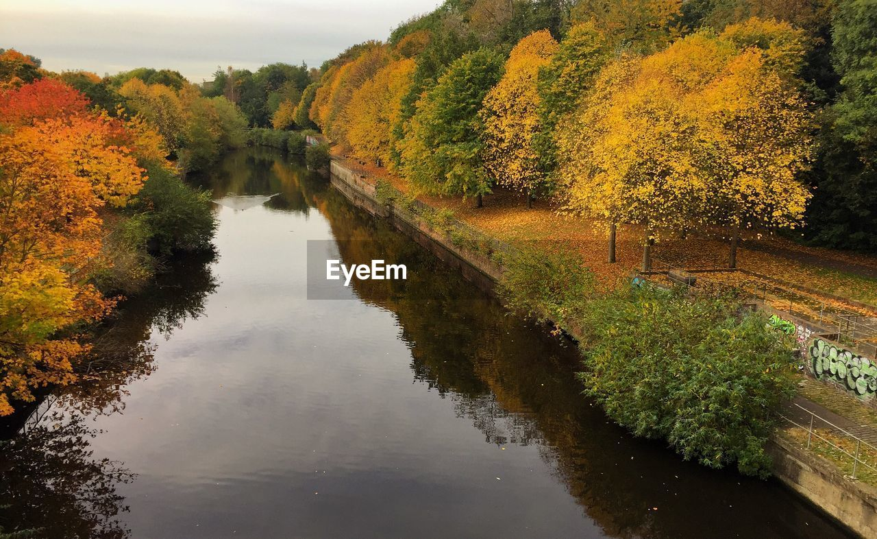 water, plant, tree, autumn, reflection, tranquility, change, beauty in nature, nature, tranquil scene, growth, scenics - nature, river, no people, waterfront, day, outdoors, non-urban scene, fall