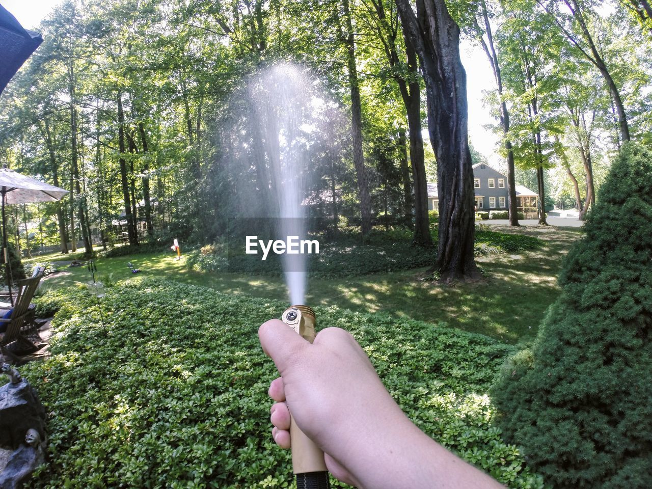 Cropped Hand Spraying Water From Hose In Garden