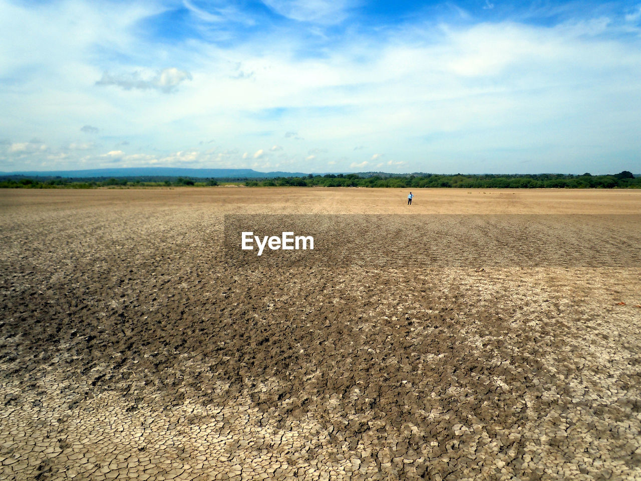 landscape, land, sky, cloud - sky, field, environment, agriculture, scenics - nature, beauty in nature, nature, rural scene, day, tranquil scene, farm, tranquility, horizon, horizon over land, plant, plough, agricultural machinery, outdoors