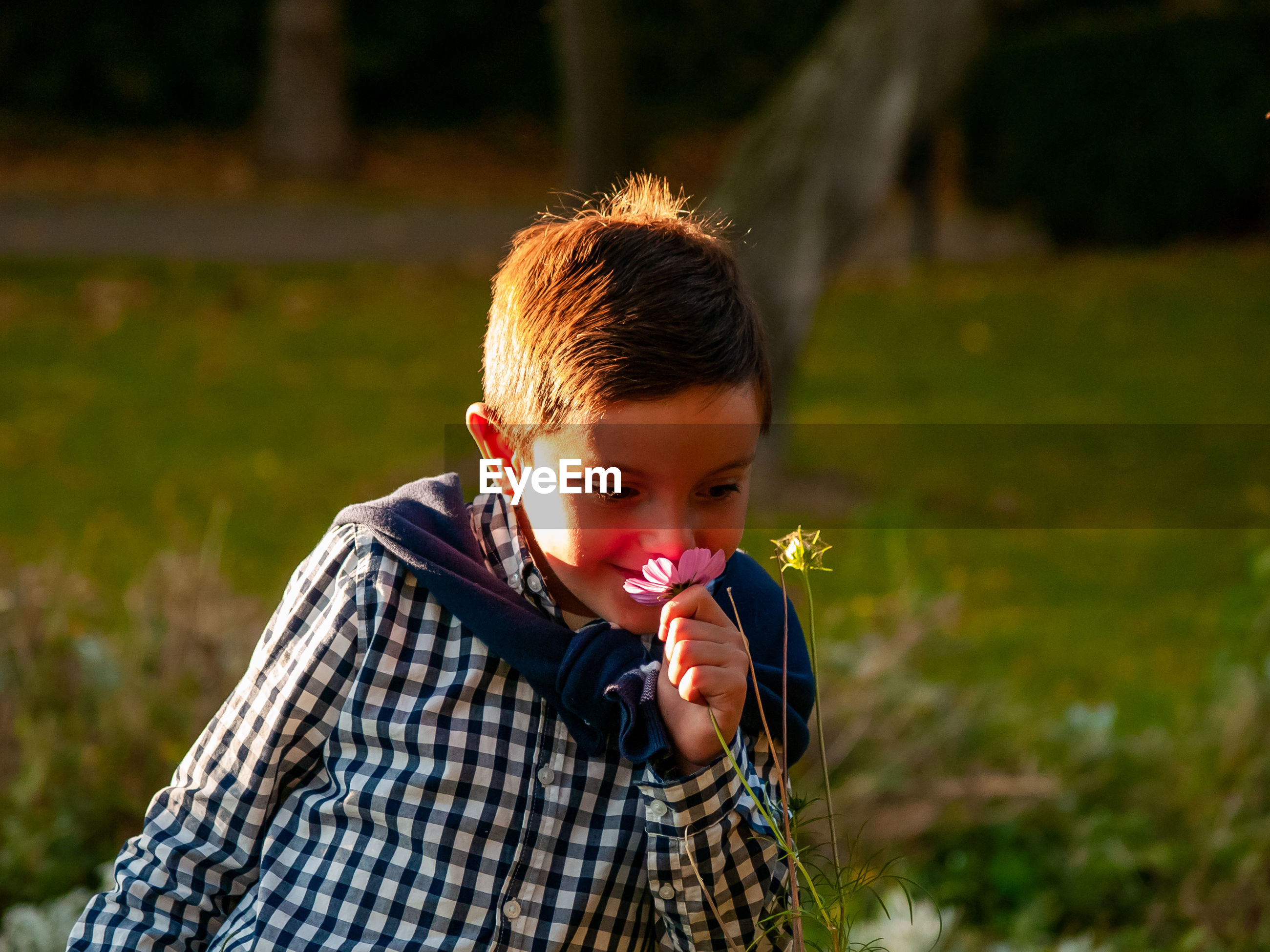 Boy smelling flower in garden