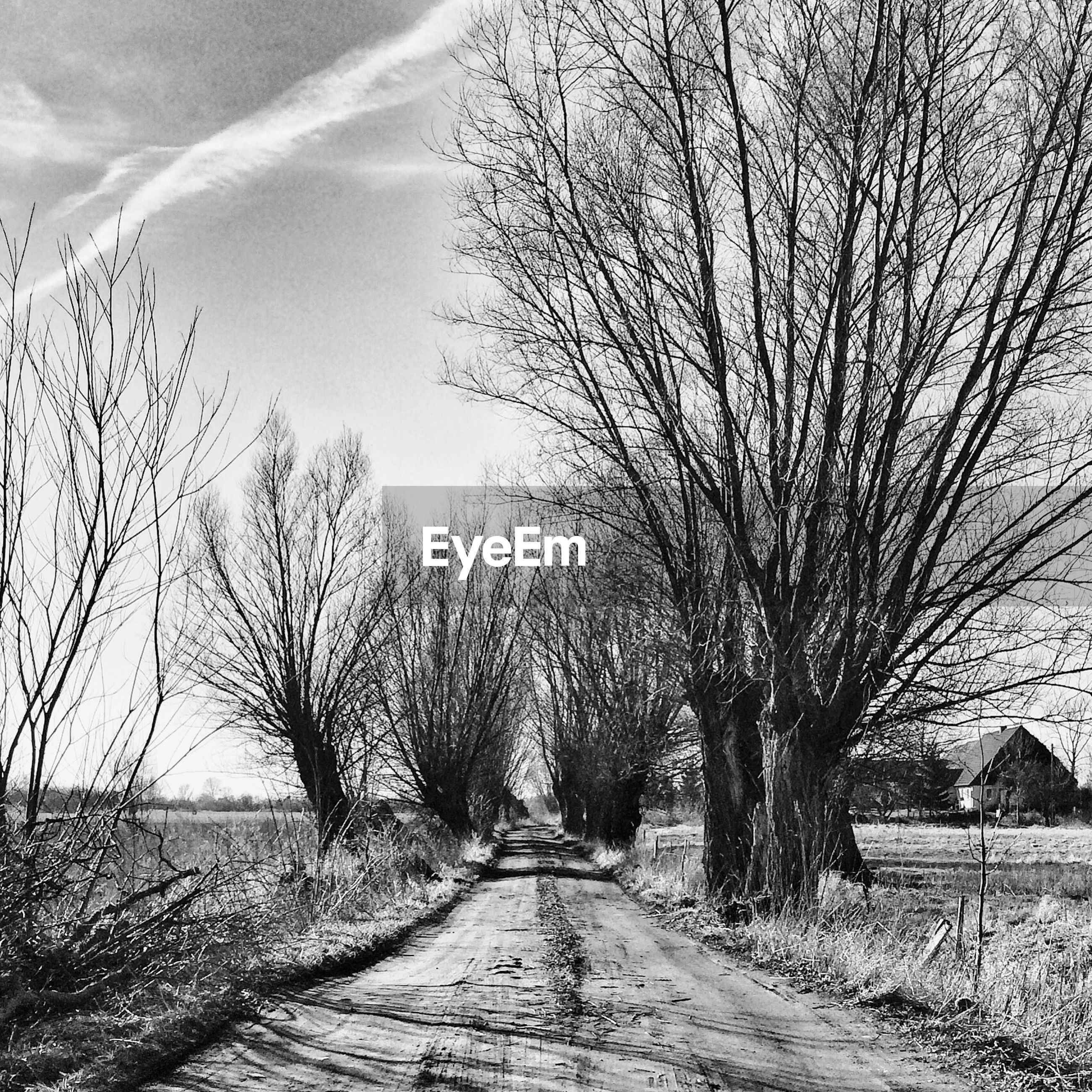 Empty dirt road
