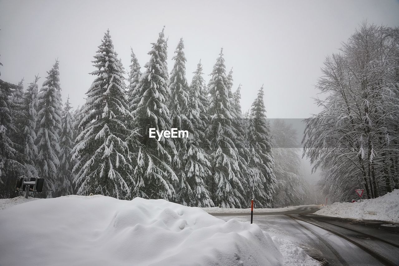 cold temperature, snow, winter, tree, plant, white color, transportation, covering, beauty in nature, nature, no people, road, frozen, scenics - nature, day, tranquility, sky, mode of transportation, tranquil scene, snowcapped mountain, snowing