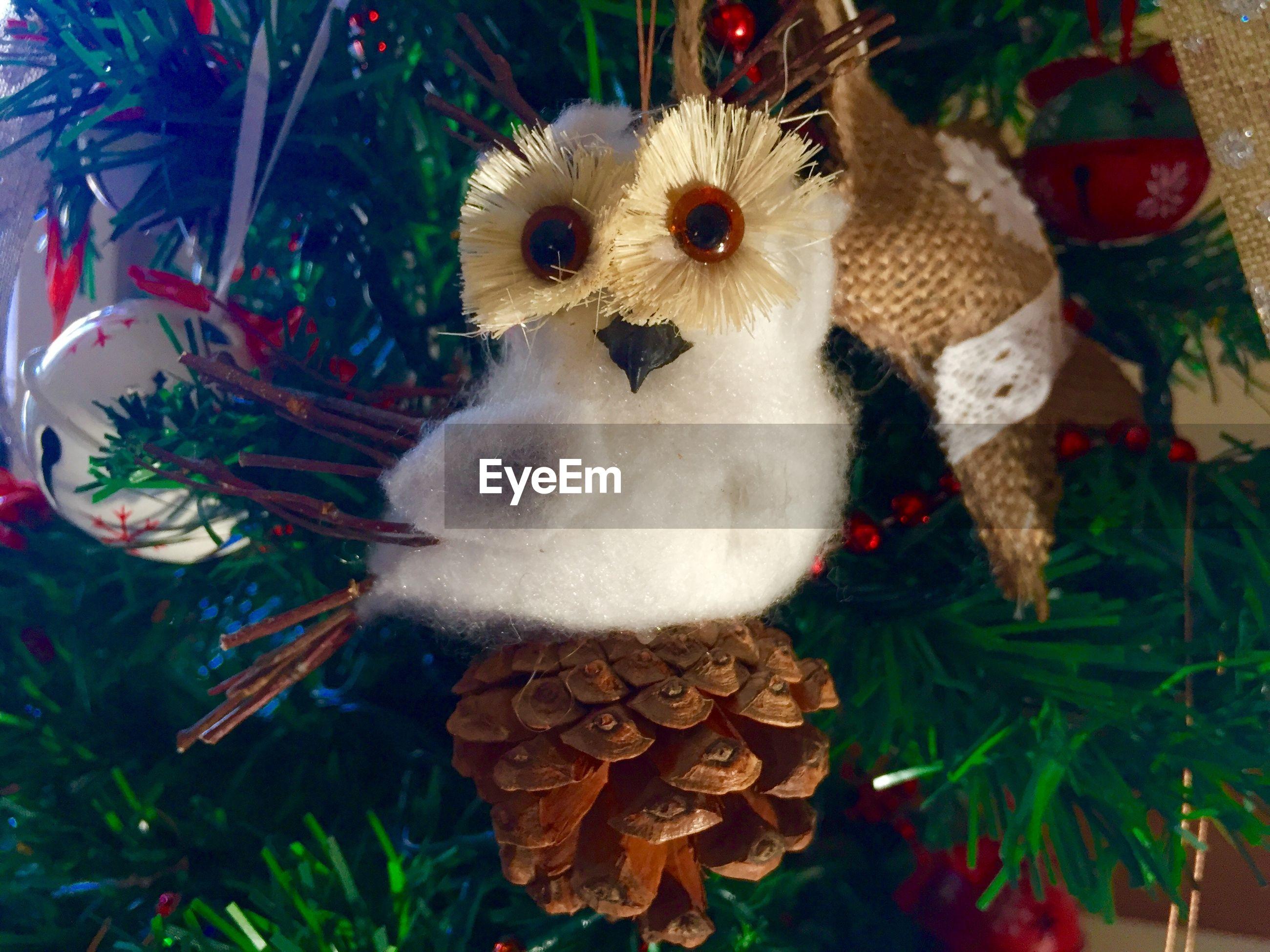 Close-up of bird shaped decoration on christmas tree at night