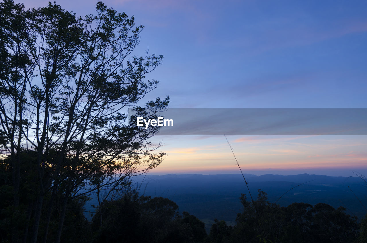 tree, plant, beauty in nature, sky, scenics - nature, tranquil scene, tranquility, sunset, silhouette, nature, cloud - sky, non-urban scene, growth, mountain, no people, idyllic, outdoors, environment, low angle view, orange color, mountain peak