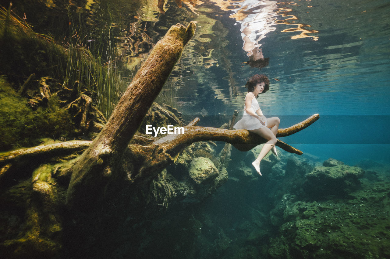 water, sea, tree, nature, underwater, full length, one person, swimming, forest, leisure activity, rock, day, young adult, plant, rock - object, animal wildlife, animals in the wild