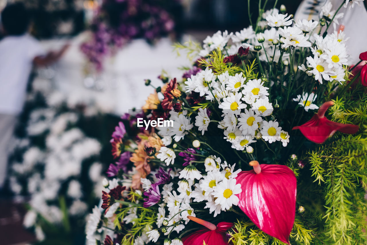 flower, flowering plant, freshness, vulnerability, plant, fragility, beauty in nature, petal, multi colored, flower head, inflorescence, nature, close-up, growth, day, focus on foreground, variation, no people, outdoors, choice, bouquet, flower arrangement, pollen, flowerbed