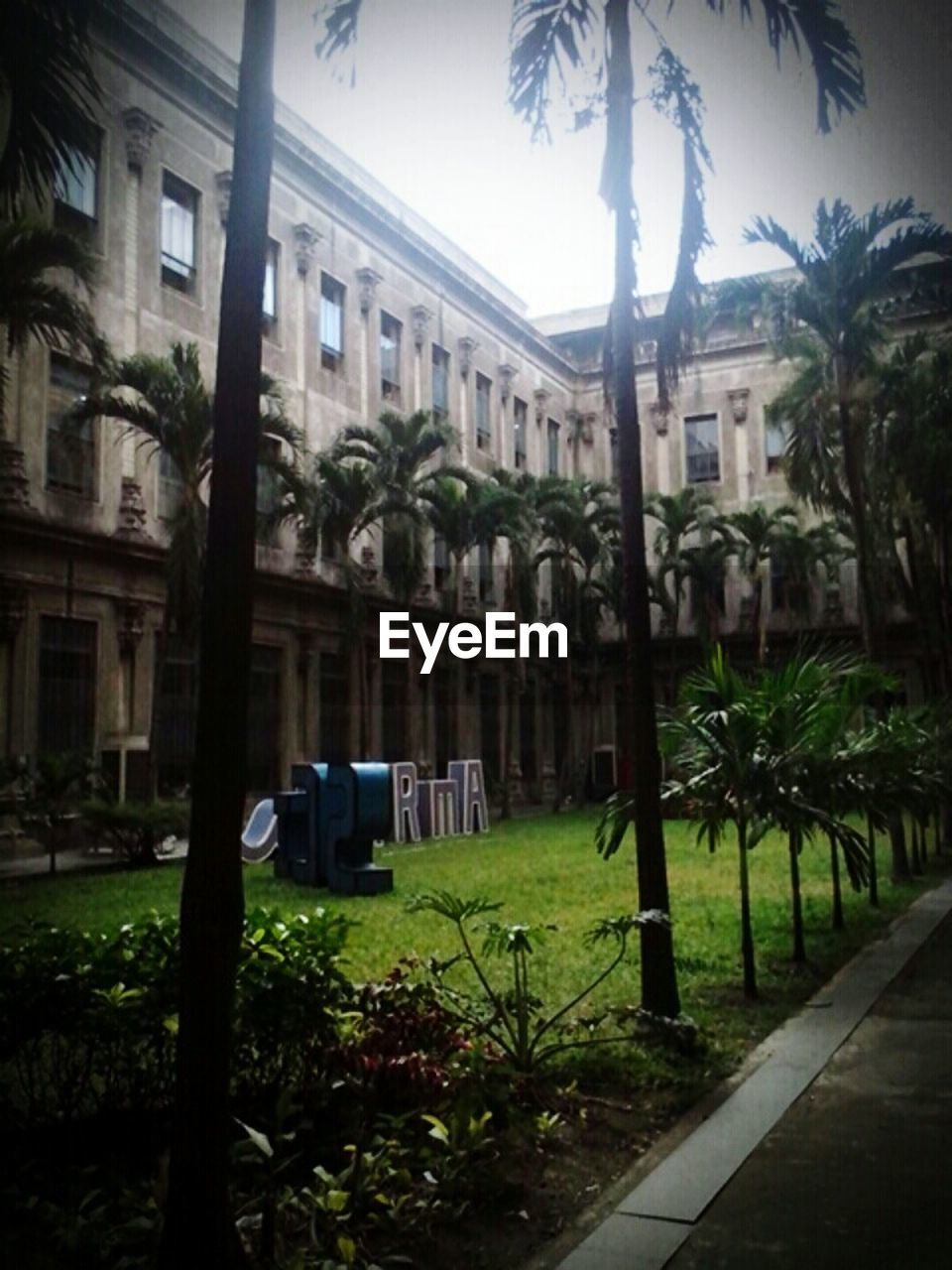 architecture, building exterior, tree, built structure, no people, outdoors, plant, palm tree, day, grass, sky, city, nature