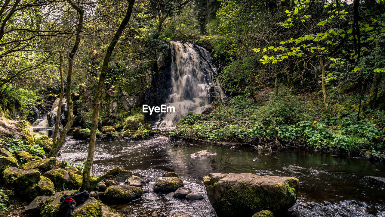 water, tree, forest, plant, rock, waterfall, scenics - nature, beauty in nature, land, rock - object, motion, solid, flowing water, nature, long exposure, no people, environment, flowing, stream - flowing water, rainforest, outdoors, woodland, power in nature, falling water, purity
