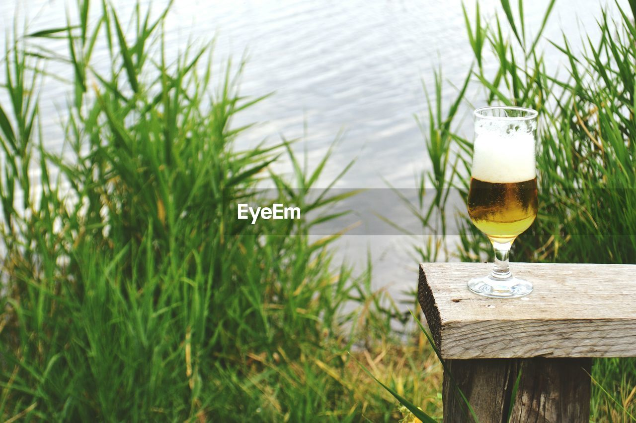 High angle view of beer glass on table in yard