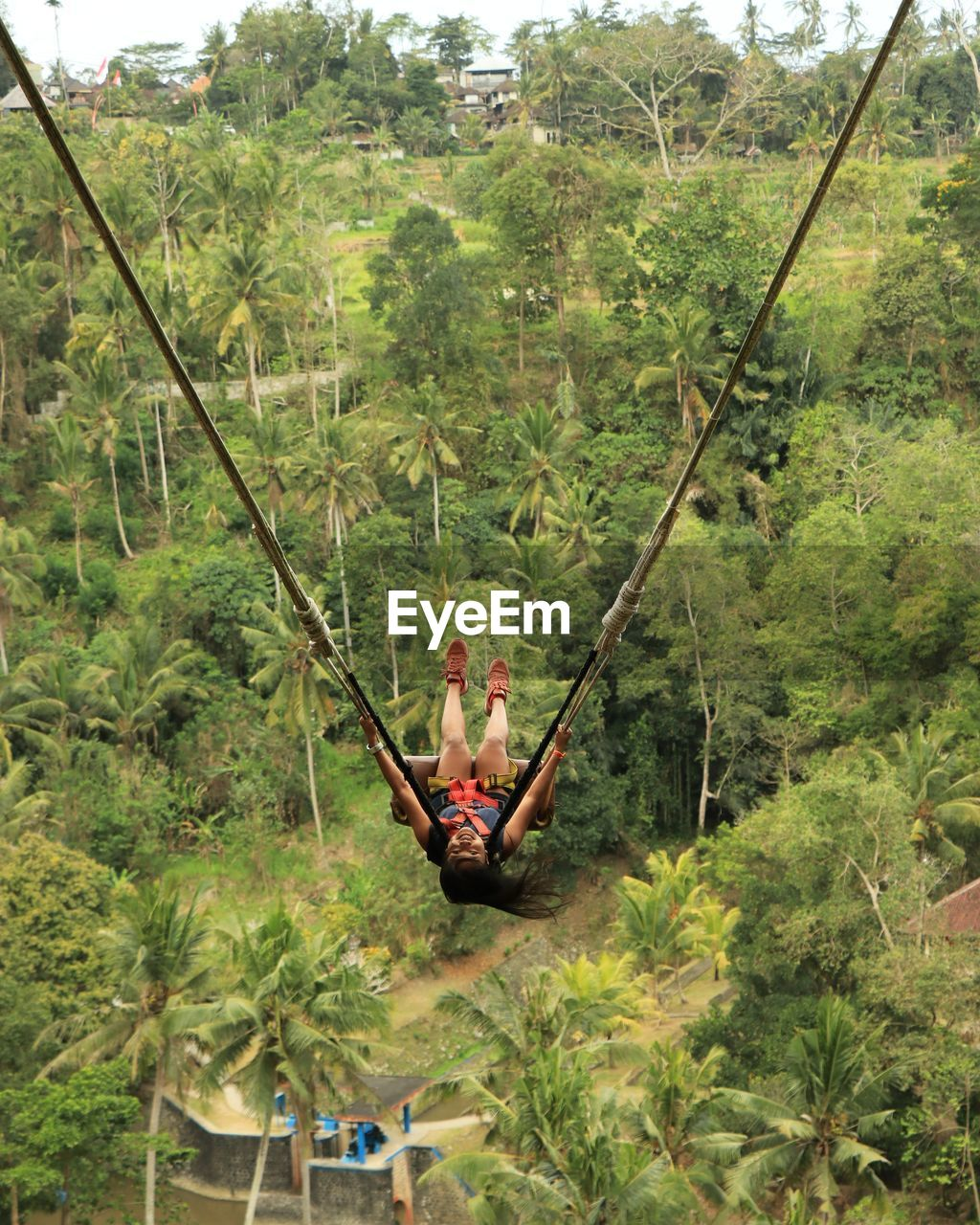 High angle view of woman swinging over trees in forest