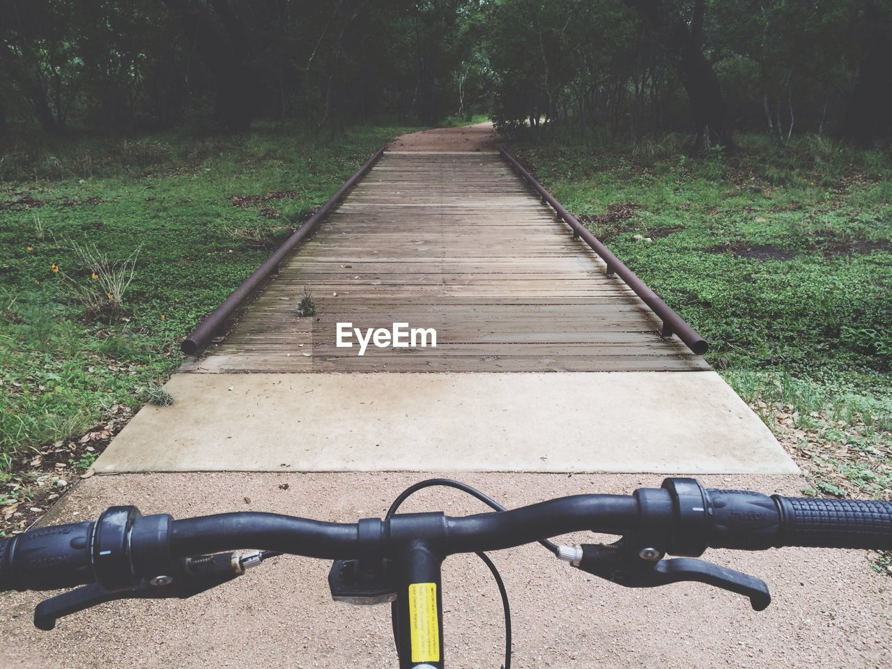 Symmetrical View Of Concrete Footpath In Park, Lawn And Trees, Bicycle Handlebars In Foreground