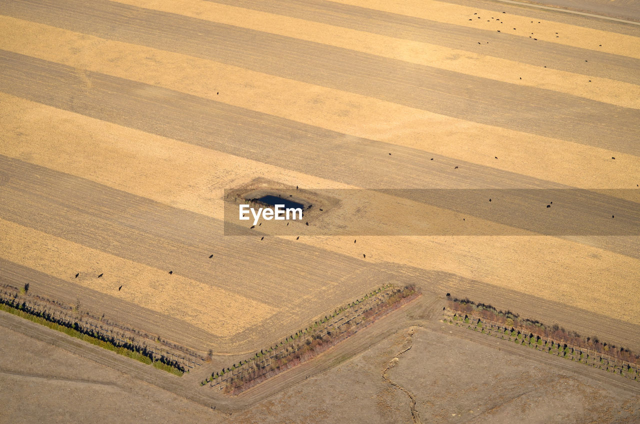 high angle view, environment, no people, day, landscape, road, nature, land, pattern, outdoors, scenics - nature, transportation, aerial view, beauty in nature, sunlight, built structure, architecture, field, non-urban scene, brown, arid climate, dust
