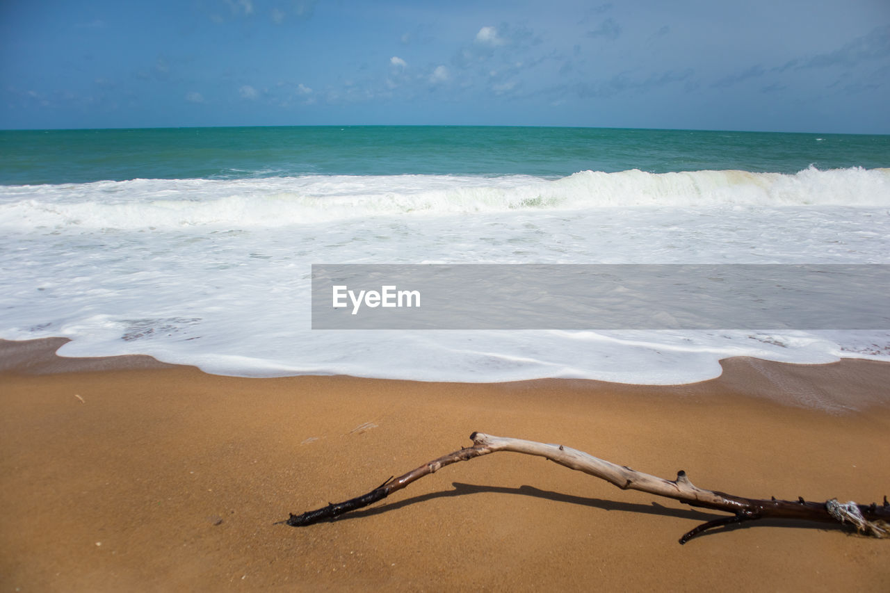 sea, beach, land, water, horizon over water, sky, horizon, scenics - nature, beauty in nature, sand, motion, tranquility, tranquil scene, nature, wave, idyllic, day, aquatic sport, sport, no people, outdoors, driftwood, turquoise colored