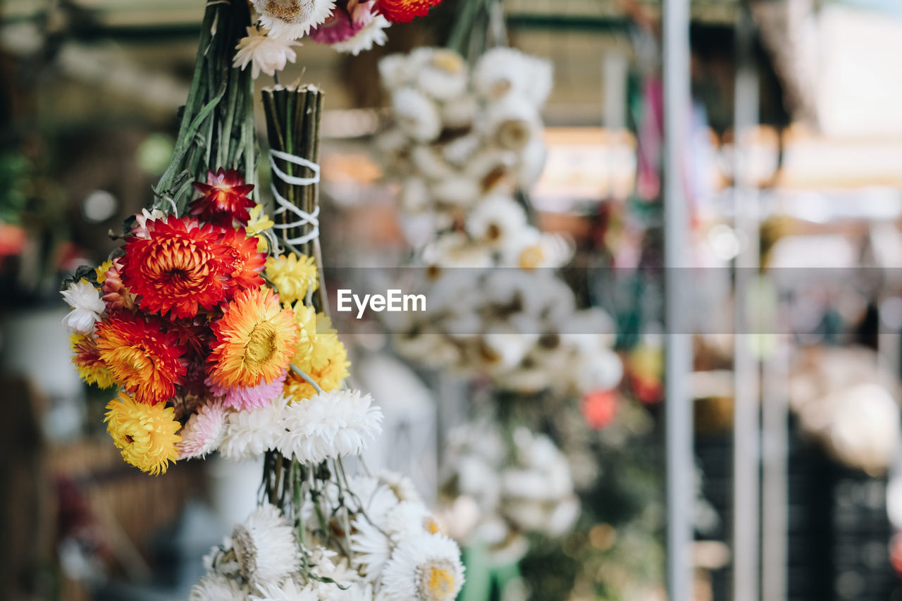 flowering plant, flower, focus on foreground, hanging, day, no people, plant, close-up, decoration, for sale, retail, selective focus, market, retail display, outdoors, art and craft, small business, nature, red, freshness, floral garland, consumerism