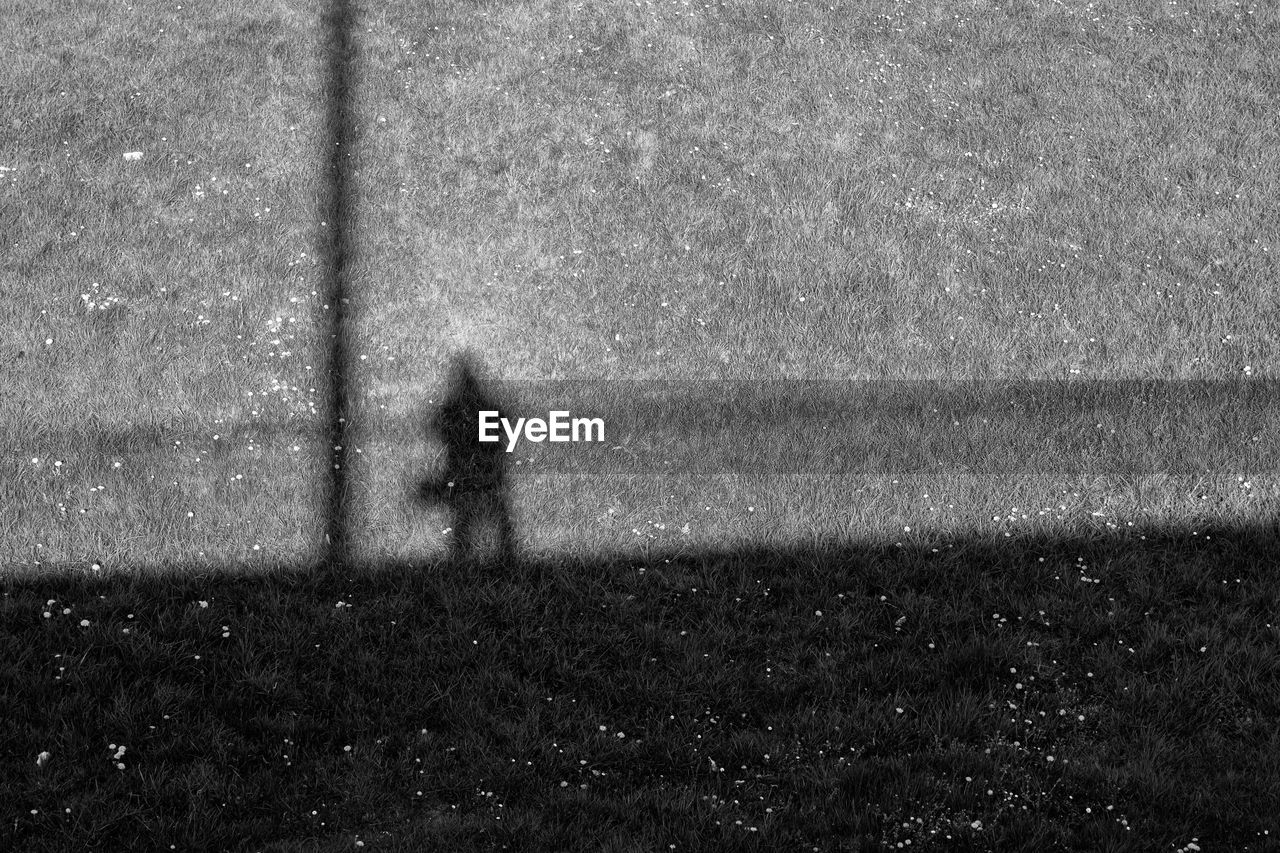Shadow of person on grassy field during sunny day