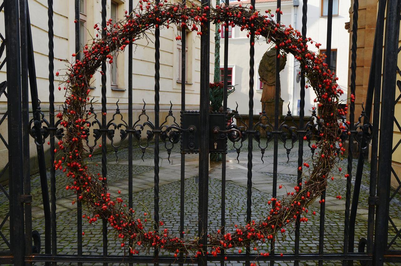 Rose hip wreath on metallic gate