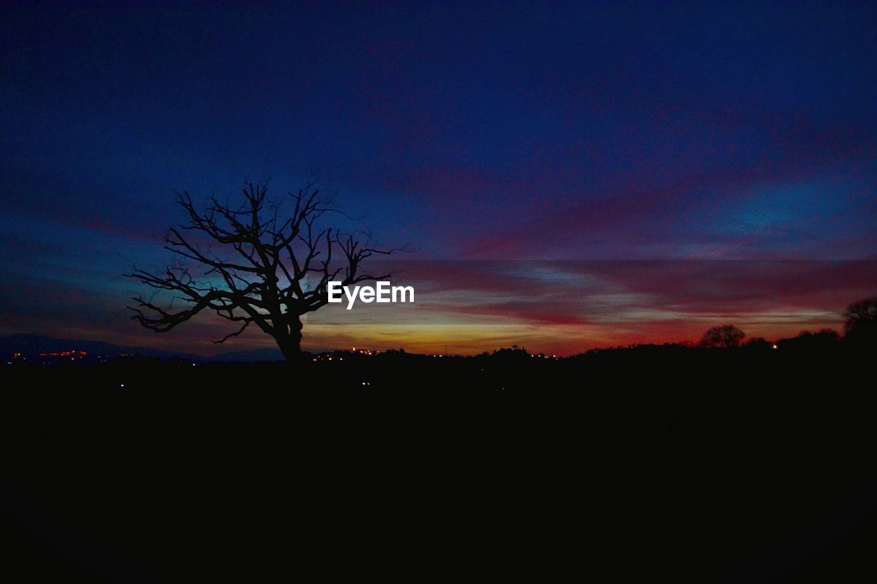 silhouette, tranquil scene, tranquility, beauty in nature, scenics, nature, landscape, sunset, bare tree, tree, sky, outdoors, no people, lone, day