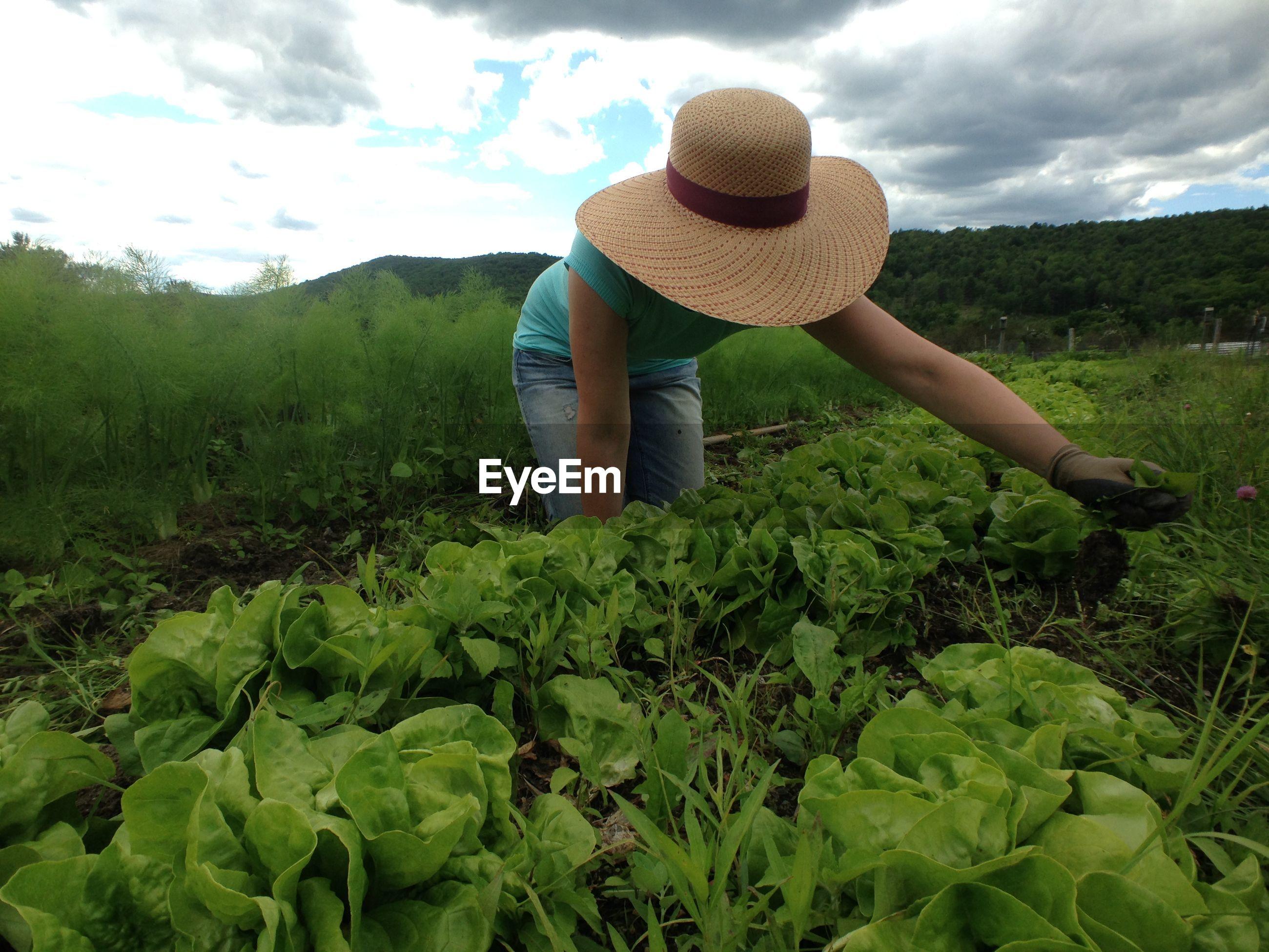 Woman wearing hat gardening
