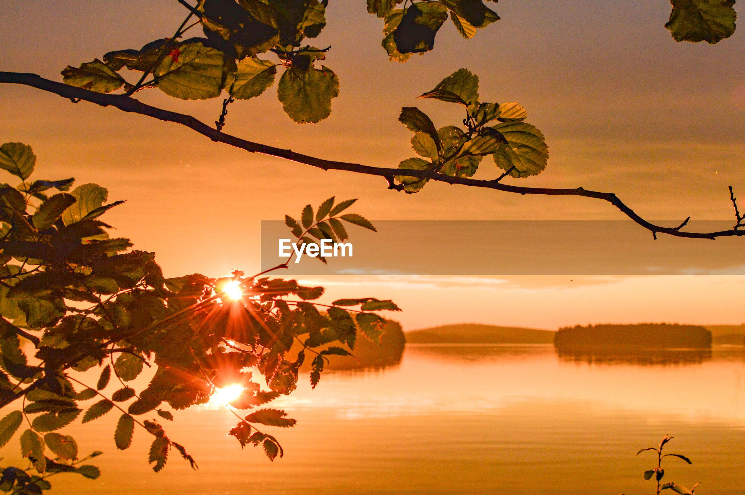 SUN SHINING OVER LAKE DURING SUNSET