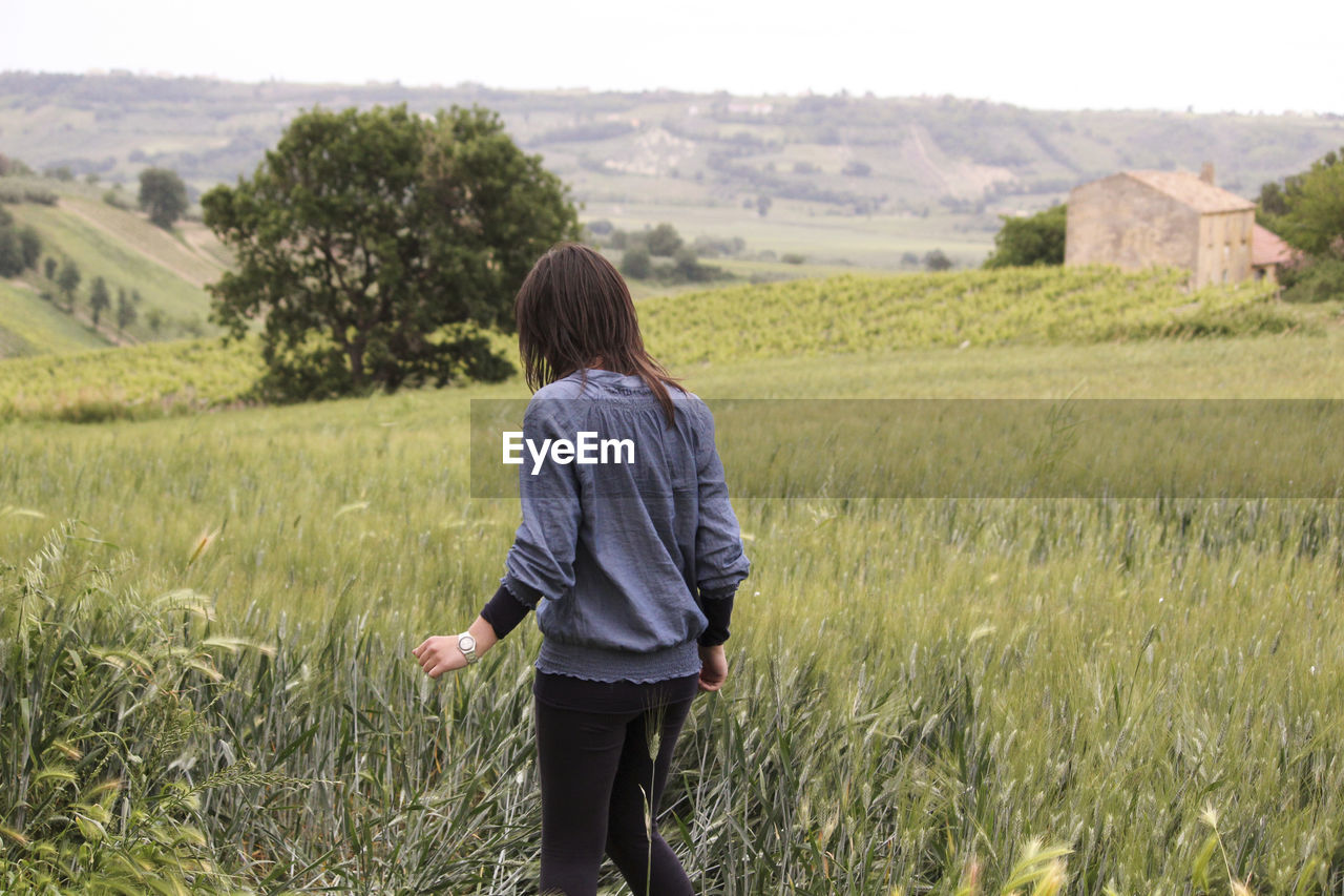 Rear view of girl standing in grassy field
