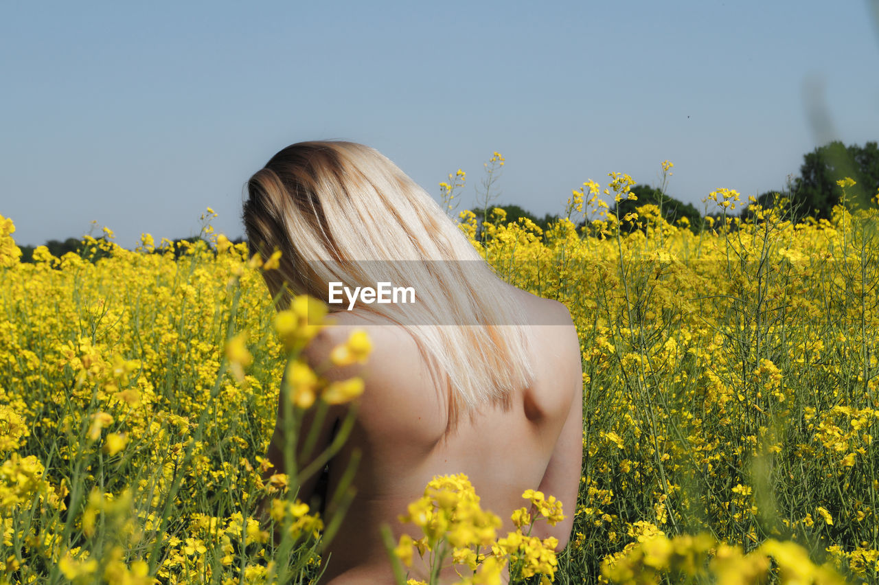 Rear View Of Naked Woman Standing In Field Of Flowers