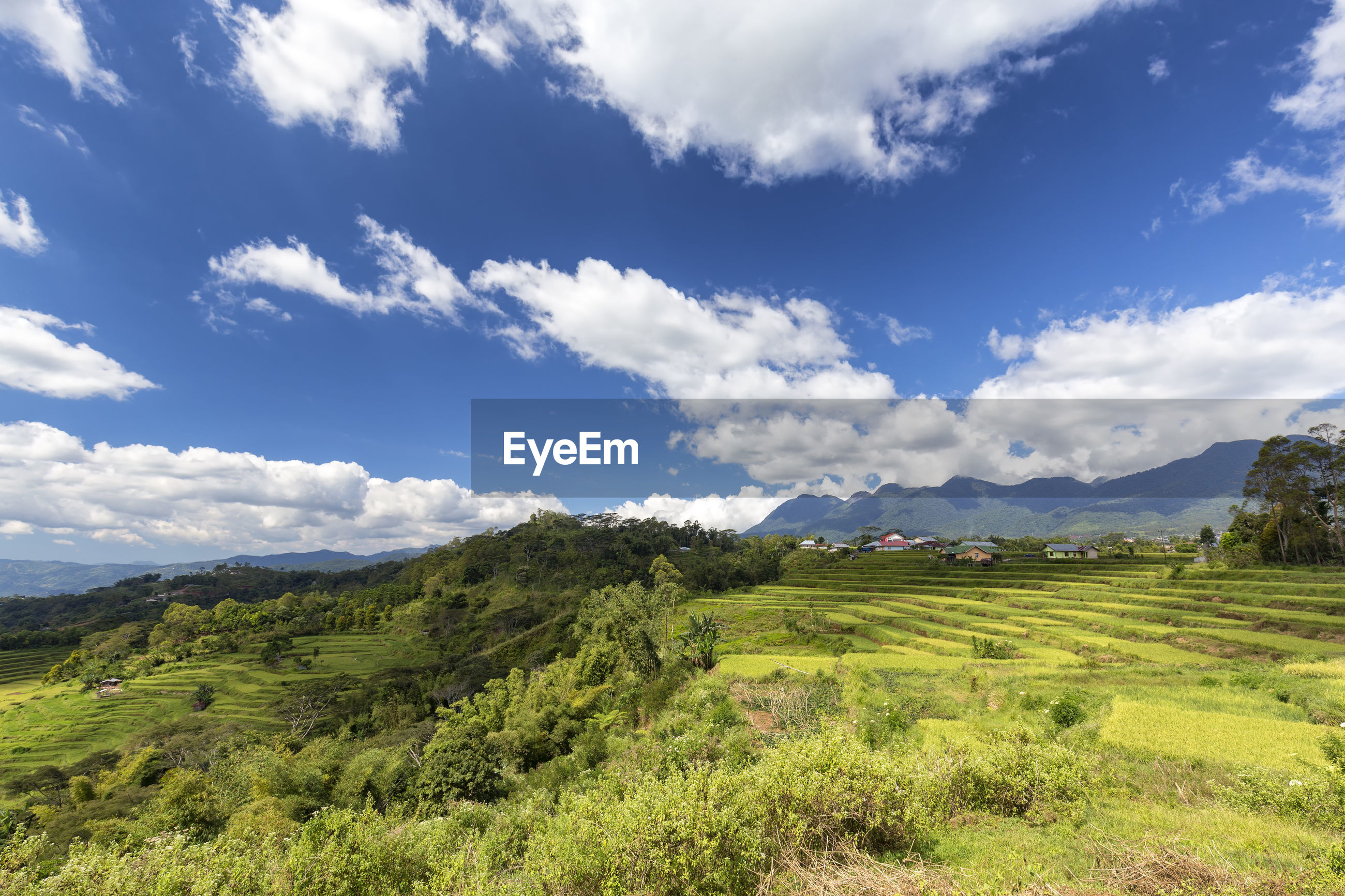 IDYLLIC SHOT OF GREEN LANDSCAPE AND MOUNTAINS AGAINST SKY