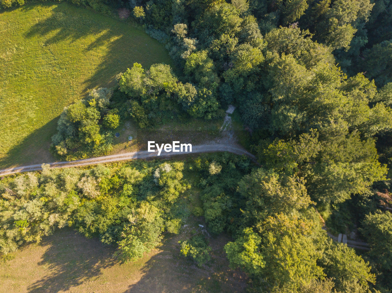 tree, plant, transportation, day, nature, no people, forest, air vehicle, green color, growth, motion, scenics - nature, sunlight, beauty in nature, outdoors, land, mode of transportation, aerial view, environment, landscape