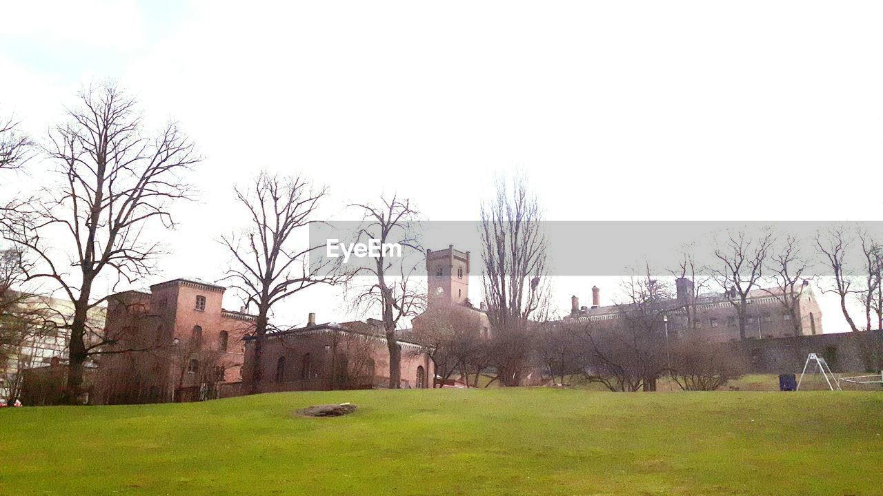 grass, architecture, built structure, building exterior, bare tree, outdoors, tree, history, day, sky, no people, nature
