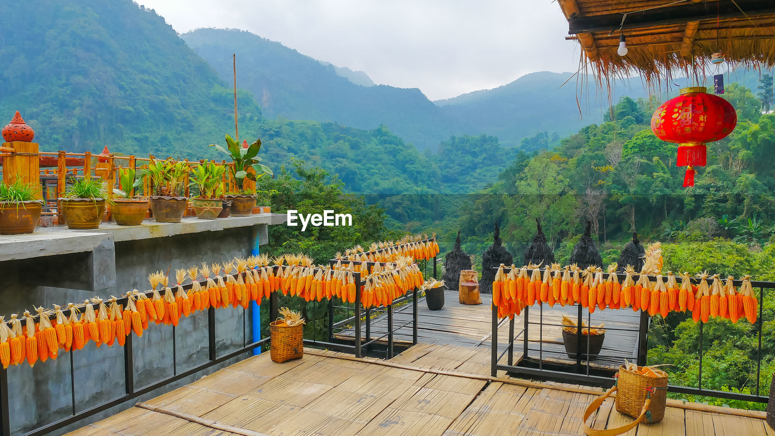 Corns decorated on railings of terrace against mountains