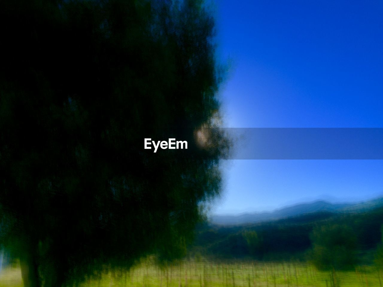 Blurred tree on countryside landscape against blue sky