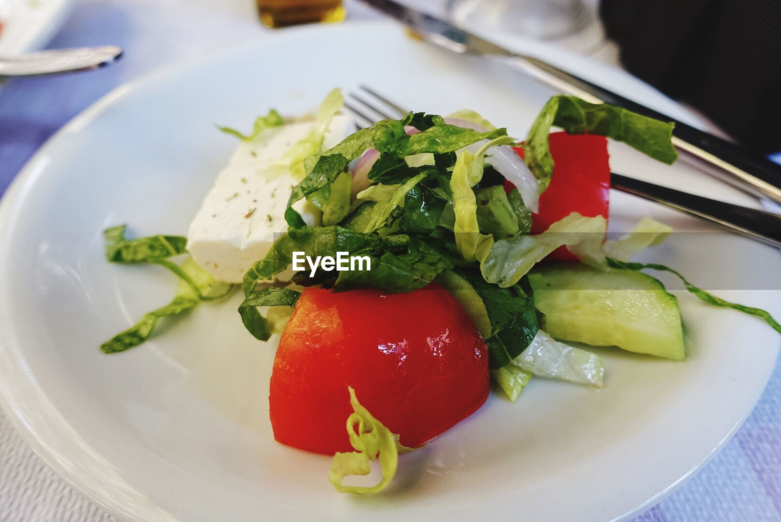 food and drink, food, plate, indoors, ready-to-eat, freshness, close-up, healthy eating, serving size, meal, leaf, appetizer, temptation, salad, vegetable, indulgence, tomato, cherry tomato, red, focus on foreground, food styling, garnish