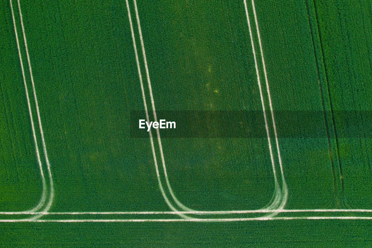High angle view of green field