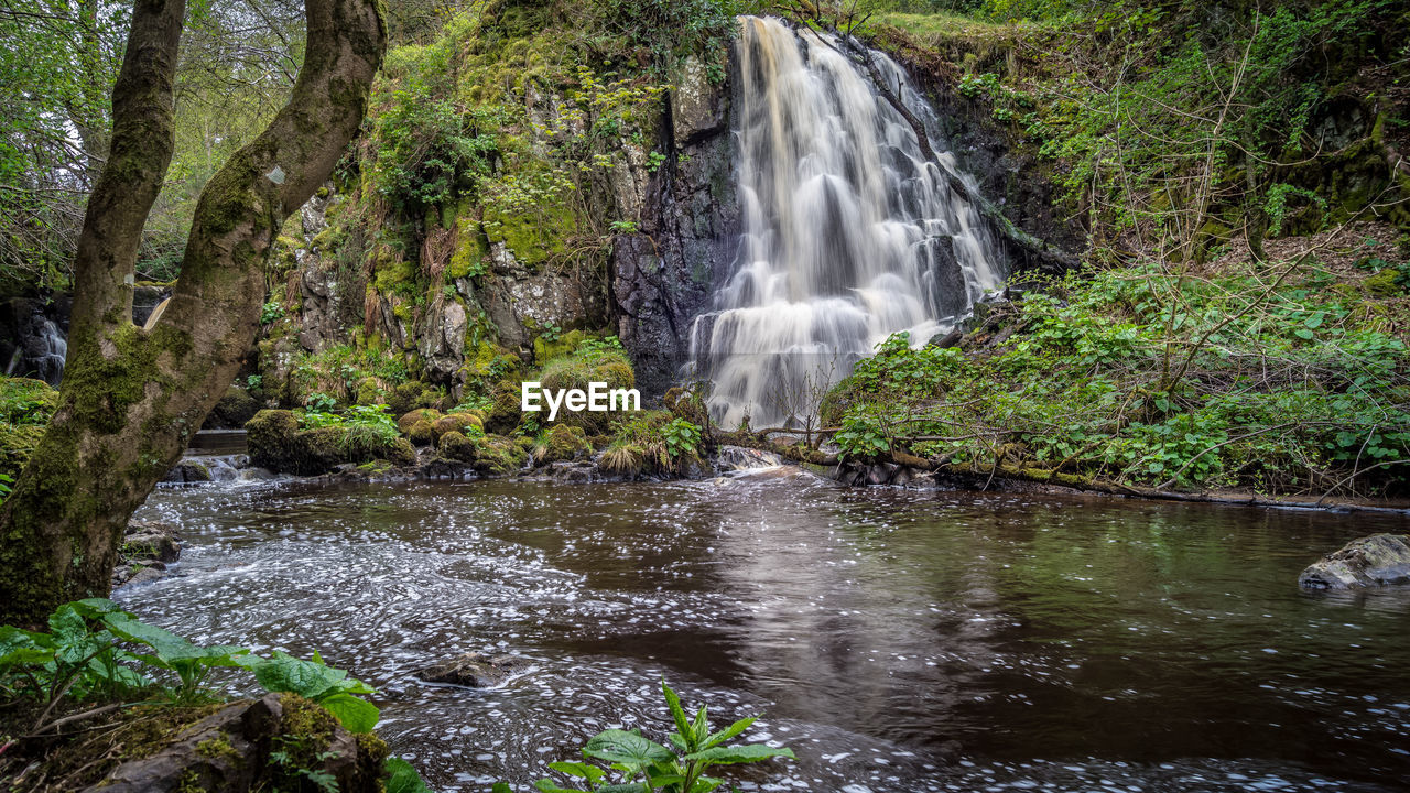 water, waterfall, scenics - nature, forest, beauty in nature, tree, rock, flowing water, motion, plant, rock - object, long exposure, solid, land, blurred motion, flowing, nature, environment, no people, rainforest, outdoors, power in nature, stream - flowing water, falling water