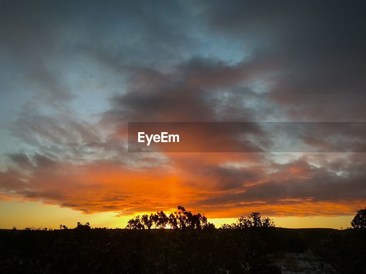 sunset, sky, beauty in nature, cloud - sky, orange color, scenics, nature, tranquility, silhouette, tranquil scene, dramatic sky, tree, landscape, outdoors, no people, day